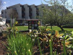 Parkhotel Brunauer: Das moderne Seminarhotel in Salzburg Salzburg, Mansions, House Styles, Plants, Home Decor, Recovery, Places, Landscape, Vacation
