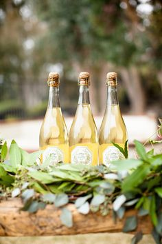 A Bohemian Backyard Bash by Sterling Social Wine Vineyards, Tuscan Wedding, Al Fresco Dining, Vineyard Wedding, Wine Country, Party Planning, Tea Party, How To Memorize Things, Backyard