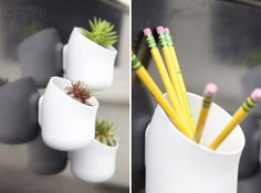 Mini succulents from The Succulence and magnetic pods from Urbio