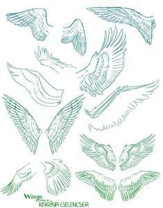 101 de classe pour le dessin d'aujourd'hui : dessin des ailes 5941 comment dessiner
