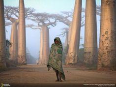 Stunning NAT GEO Photographs of 2012 - 19 PHOTOS - Fabulous Traveling