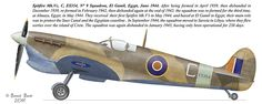 Ww2 Aircraft, Fighter Aircraft, Military Aircraft, Fighter Jets, South African Air Force, The Spitfires, Supermarine Spitfire, Ww2 Planes, Battle Of Britain