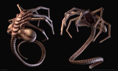 One of the reasons the alien face-huggers designed by H.R. Giger get such a visceral reaction from movie-goers is the way they take familiar elements from real animals and other sources and recombine them into something hideous and new.