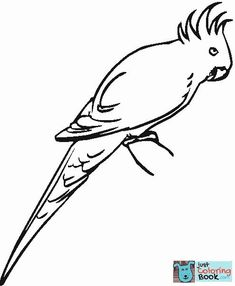 Galah Cockatoo Super Coloring Craft Galah Cockatoo Cockatoo Intended For Free Printable Galah Cockatoo Coloring Pages Flamingo Coloring Page, Owl Coloring Pages, Free Printable Coloring Pages, Coloring Books, Free Printables, Galah Cockatoo, Wildlife Of India, Wild Birds, Drawing For Kids