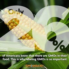 Only 26% of Americans know that there are GMOs in their food. This is why labeling GMOs is so important! More: www.gmoinside.org