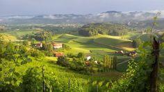 Das Land der hunderttausend Hügel: Man muss schon ein Herz aus Stein haben, um in der Südsteiermark nicht ins Schwärmen zu geraten.
