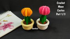 Slip Stitch, Crochet Flowers, Single Crochet, Cactus Plants, 3d, Amigurumi, Crocheted Flowers, Cacti, Crochet Flower