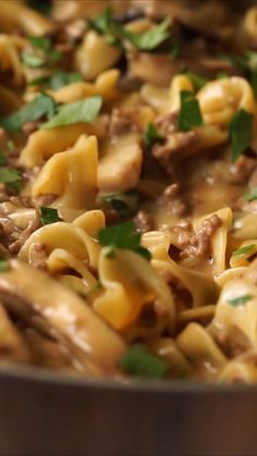 One Skillet Ground Beef Stroganoff is filled with hearty ground beef, mushrooms and tender egg noodles in a delicate, yet simple sauce. beef stroganoff One Skillet Ground Beef Stroganoff Ground Beef Recipes For Dinner, Dinner With Ground Beef, Dinner Recipes, Recipe With Egg Noodles And Ground Beef, Ground Beef Recipes Skillet, Recipes Using Egg Noodles, Recipes With Ground Beef Videos, Recipes For One, Simple Recipes For Dinner