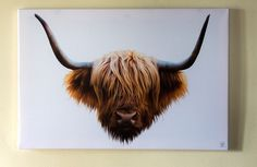 Highland Cow Cattle large professional canvas wall print decor