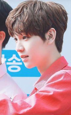 Dongyun Produce x 101 61 Kg, Kim Dong, Woollim Entertainment, Boys Over Flowers, Kpop Boy, Entertaining, Babies, Kids, Blood Types