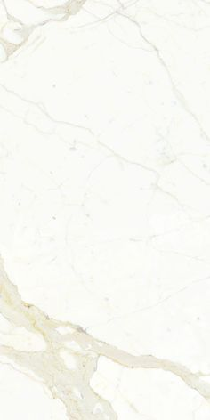 Porcelain Tile: Calacatta maximum: Marmi maximum by Fiandre