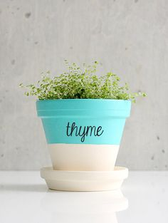 Customize your favorite planter with a fanciful herb decal.