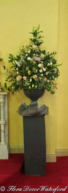 A few pics from Ciara & Paddy's Slieverue Church Wedding. Church Wedding, Wedding Events, Wedding Flowers, Flora, Planter Pots, Wedding Decorations, Wedding Decor, Plant Pots, Wedding Jewelry
