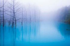 北海道美瑛町白金「青い池」
