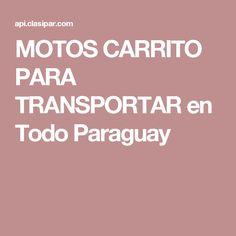 MOTOS CARRITO PARA TRANSPORTAR en Todo Paraguay