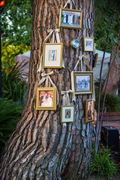 Tree decoration..hang wedding photos' of parent, grandparents