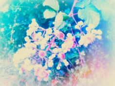 flower magic #wildflowers #theydonboys #essex #nature #wild