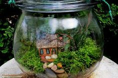Build your own rustic cottage getaway in a simple to do terrarium project. They make lovely gifts for even the gardening - challenged and are wonderful home decor! (Garden of Len & Barb Rosen)  For step - by - step directions and more pictures, just click on the terrarium!