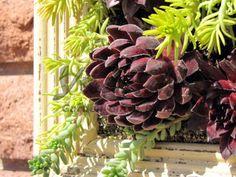 Sublime 45+ Amazing Picture Frame Ideas to Make Home More Precious https://decoredo.com/9902-45-amazing-picture-frame-ideas-to-make-home-more-precious/