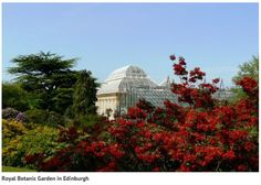THE Royal Botanic Garden is to be analysed for signs of pixies and elves after claims that supernatural spirits live in the grounds. Paranormal experts will visit the site in Edinburgh over the next two weeks with sensitive equipment in an attempt to detect if there really are fairies at the bottom of the garden. […]