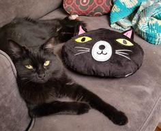 Wanda and hey matching pillow.