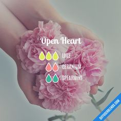 Open Heart - Essential Oil Diffuser Blend