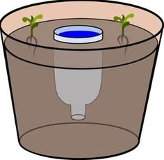 Homestead Survival: Planter DIY Water Reservoir For Potted Plants