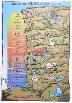Durée de biodégradabilité des déchets en mer