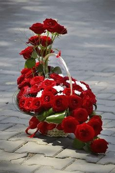 of red roses Beautiful Flowers Pictures, Beautiful Gif, Beautiful Roses, Flowers Gif, All Flowers, My Flower, Hearts And Roses, Red Roses, Flower Images