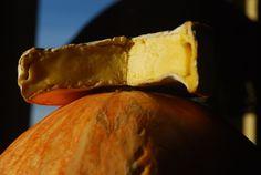 Sery Polskie #polish #cheese