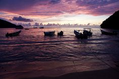 Sucre, Playa, Venezuela