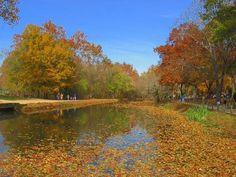 Chesapeake and Ohio Canal National Historical Park in autumn #hagerstown #maryland