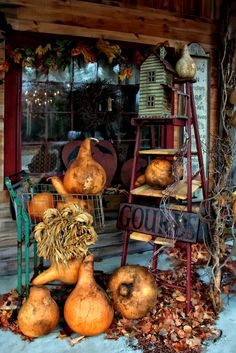 Prim Fall...birdhouse on an old ladder and gourds on the porch. Love this look for a store display or play with it for a porch....