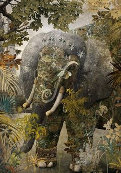 THE JUNGLE BOOK BY GABRIEL PACHECO