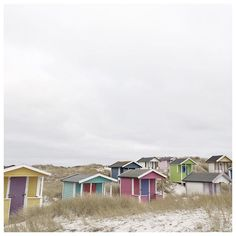 I found the cutest cottages in #falsterbo. I could have spent the whole day there if it would have not been so freaking cold. #windyday #skåne #plungebytiiatravels #ilovetraveling #beachday #sweden #visitsweden #nature #holiday