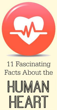 11 Fascinating Facts About the Human Heart ~ http://healthpositiveinfo.com/facts-about-the-human-heart.html