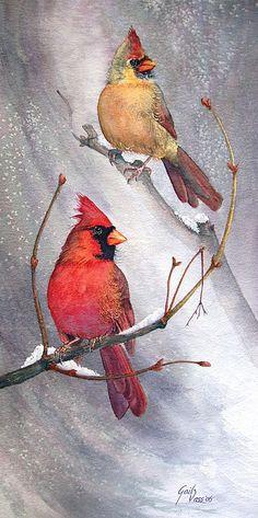 Cardinals Print by Gail Vass