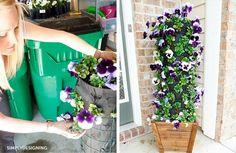 23 fenomenális ötlet, amely biztosan feldobja a kertedet – BuzzBlog