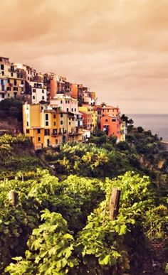 Vacation Consultation for Northern Italy