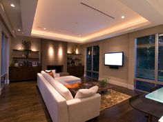 Modern Contemporary Living Room with Hardwood Floors