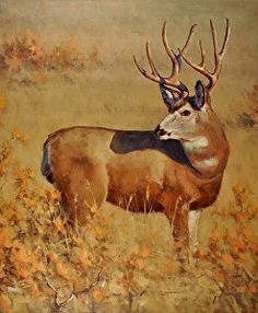 Muley by artist Greg Scheibel. #wildlifeart found on the FASO Daily Art Show - http://dailyartshow.faso.com