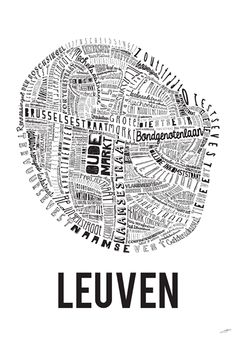 Leuven, by Thomas Haine