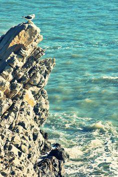 """Lo scatto del """"mare d'inverno in #Liguria"""" di @Paola Faravelli evoca questa sensazione """"L'essenziale è [in]visibile agli occhi"""" (semi cit.)"""