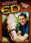 1960s television shows - Google Search -  Mr. Ed, the Talking Horse