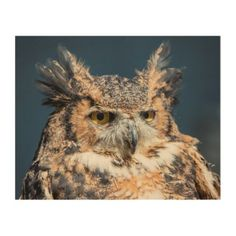 10x8 Great Horned Owl Portrait Wood Wall Art - animal gift ideas animals and pets diy customize