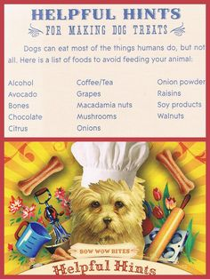 List of foods to AVOID when making homemade dog food