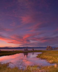 Dusk, Wetlands, Mono Basin National Forest Scenic Area, Inyo National Forest , California