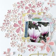 Crate Paper La La Love Blush Paper.