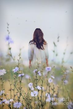 Woman walking in field of blue flowers Photograph  - Woman walking in field of blue flowers Fine Art Print