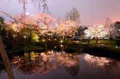 *Roppongi Hills Mori garden, Sakura-zaka *Tokyo, Japan